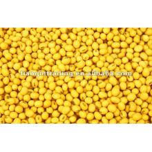 Желтые бобы маш