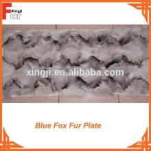 Vorderpfoten-blaue Fox-Pelz-Platte