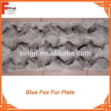 Blue Fox Fur Plate