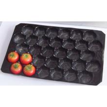 Meistverkaufte in Mexiko, Kanada Markt Supermarkt Display Blister Prozess Lebensmittelqualität PP Einsätze für Tomaten 39X59 cm