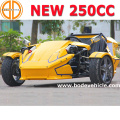 Bode Quality Assured Roadster Ztr 250cc for Sale Ebay