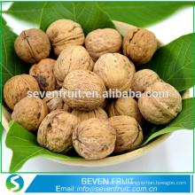 Produits chinois les plus vendus Fruits secs décoratifs en noyer