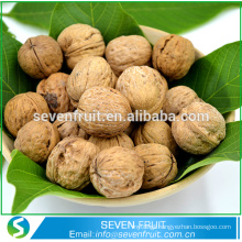 Best selling Chinese products Walnut decorative dried fruit