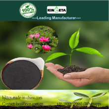 Organic carbon based water soluble fertilizer
