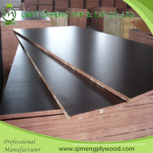 Waterproof Glue Poplar Core 15mm Shuttering Plywood for Construction
