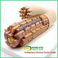 HEART17(12493) Smooth Muscle Anatomical Enlarged Medical Anatomical Model