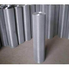 Galvanized Welded Wire Mesh/Galvanized Welded Wire Mesh Panel