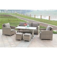 Garden Rattan Wicker Sofa with New Design