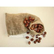 Hot sale high quality fresh chestnut