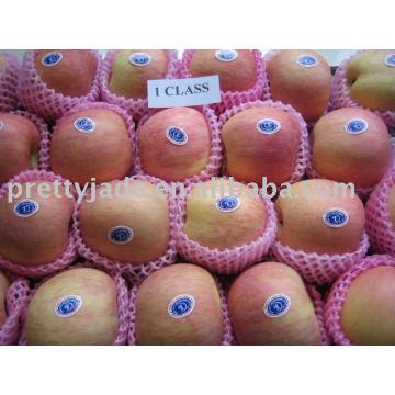 Meilleur prix pomme de fuji