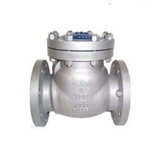 Swing Flange Type Check Valve
