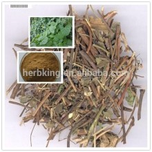 High Quality Akebia Caulis Extract