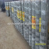 Sheep wire fence(Hot sell)