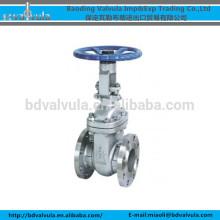 API 150lb valve à clapet de type flasque 1 pouce