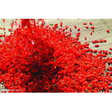 Chinese Dried Wolfberry Goji Berries