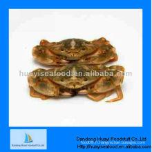 Nouveau crabe de boue congelée