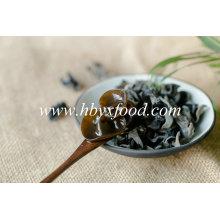 Légumes déshydratés de champignon noir séché