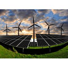 Gerador da turbina de vento 1000W / gerador da energia eólica