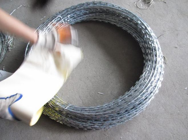 razor wire 0013