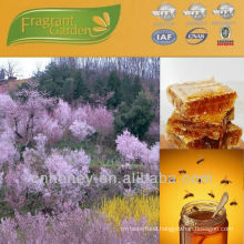 multifloral honey for sale