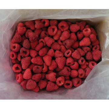 IQF Freezing Organic Raspberry Hr-16090905