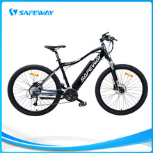 Flat rear motor MTB electric bike