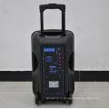 12-дюймовый динамик с акустической системой большой мощности Bluetooth FM F12-1