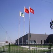 10m Price Galvanized Steel Flag Pole