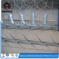 Security Wall Razor Wire Fence Spikes