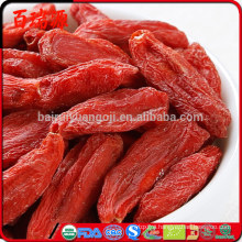 Fresh goji berries for sale goji berries for sale in stores goji berries for sale california