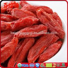 Frutas secas orgânicas de alta qualidade chinesas das bagas de Goji do Ningxia