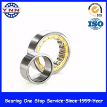 Cylindrical Roller Bearing (NU 205)