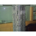 High Quality Galvanized Field Fence-Hts001A