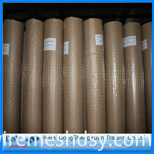 304, 316 SS Welded Wire Mesh for Chicken Cage