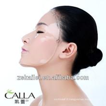 masque de collagène dermique