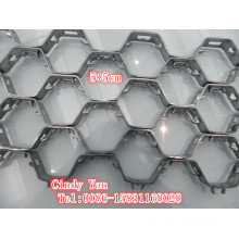 Ss304 Ss410 capa de tortuga hexagonal grosor neto 2.2mm / Ss 304 Hex Net fábrica profesional