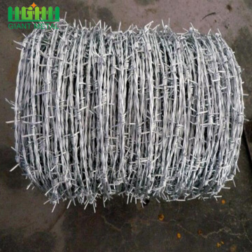 Factory Price Stainless Steel Barbed Wire for Sale
