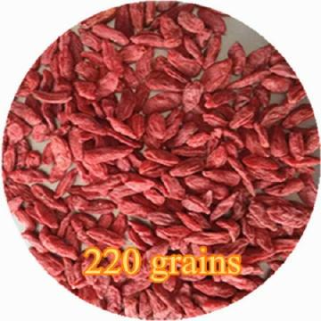 Taille 220 Goji Berry Rouge