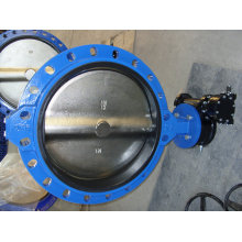 Konsentris tunggal Flanged Butterfly Valve