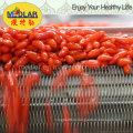 ИСО 9001 родной Оптовая сушеные ягоды Годжи-350ПК/50г