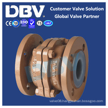 Stainless/Carbon Steel Fluorine Lined Flanged Check Valves