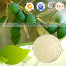 Polvo de Extracto de Hoja de Olivo Anti-Oxidación Oleuropein 80%