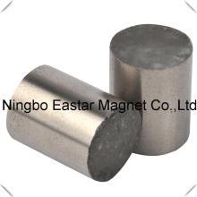 Tamaño grande neodimio cilindro imán Ni galjanoplastia