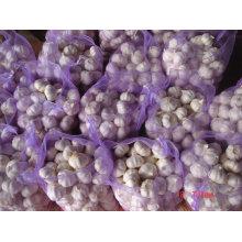 Китайский чисто Белый чеснок 20кг/мешок