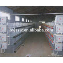 commercial chicken cages / broiler chicken cage / design for chicken coop