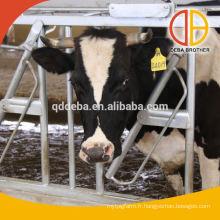 Chargeurs à tête de bétail