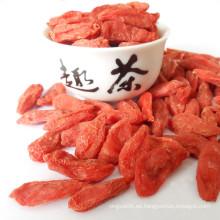 Planta de bayas Ningxia Goji - Bayas de Goji rojas secas