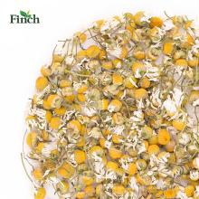 Camomila secada da flor da erva nova da saúde da chegada do passarinho