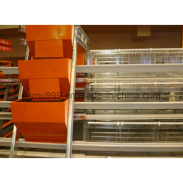 Egg Laying Chicken Cage for Poultry Farm