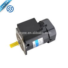 60w single phase low rpm electeic ac induction motor